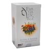 Biogena Fantastic Tea Borůvka+Rakytník n.s.20x2.5g