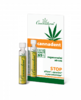Cannaderm Cannadent sérum 1x1.5ml